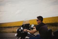 Onward To Sturgis (theelectricmango) Tags: carefreehighway highway bikes 200 f3 nikkor nikon f18 50mm kodakgold sunflowers ridersonthestorm motorcycle harleydavidson harley sturgis 35mm film