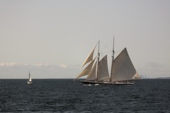 CN4A1116 - Gloucester Schooners Race (Syed HJ) Tags: canoneos5dmarkiii canoneos5diii canon5diii canon 5d 5diii canonef70200mmf28lisiiusm canonef70200mmf28lisii canonef70200mmf28l canonef70200mm canon70200mm 70200mm schoonersfestival schoonersfestivalgloucesterma schooners boats sailboats gloucesterma gloucester ma