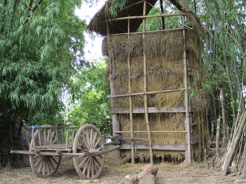 hay and wagon