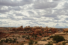 Canyonlands Cloudy Needles Landscape (David M Hogan) Tags: landscape utah sandstone hike canyonlandsnationalpark needles coloradoplateau americanheritage needlesdistrict southwestroadtrip2011