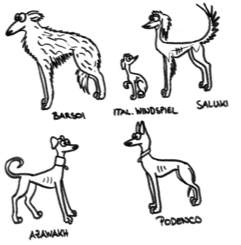 Comic-Whippet andere Windhundfraktion