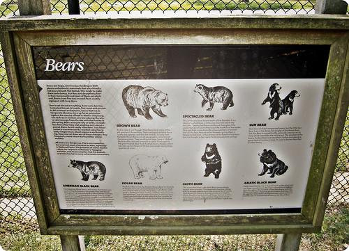 Cape May Zoo 11