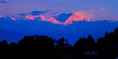 Kanchanjangha range (Sougata2013) Tags: morning winter red sky cloud india mountain snow cold color nature colors sunrise nikon hill january himalaya bengal darjeeling hilltop goldenhour bangla westbengal 2014 morningview snowpeak himalayanrange kanchanjangha sonarbangla kanchenjungarange nikoncoolpixl120