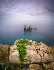 Morning glory (alexrodriguez6) Tags: morning maana lucroit lucroit100 lucroit165 norte cantabria espaa spain lafphtography lafphotographyes lafphoto lafphotography panclio alejandro alejandrorodriguez alex nikon d750 tokina 1628