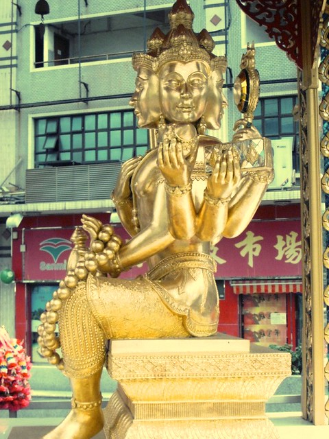 Macau Taipa & Coloane (7)