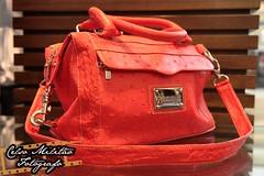 Bolsa feminina (vermelha) em couro de avestruz (Celso Milito) Tags: verde paran brasil canon cobra flash rosa amarelo 5d avestruz cinto bolsa botas sapato elefante londrina jacar markii catuai couro calados 24105mm