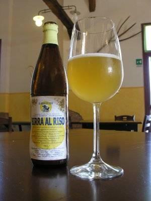 Birra con calice