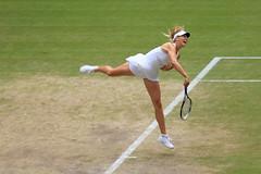 Sharapova (leotcs) Tags: ladies court centre tennis wimbledon singles sharapova 2011 semifinals