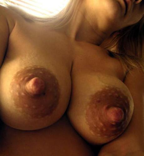big boobies gallery tits wallpapers pics: bigtits