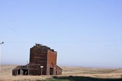 destroyed barn (heatherrl) Tags: southdakota roadtrip ghosttown okaton