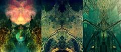 Leif Podhajsky - 3 (kickitonMARS) Tags: kunst natur cover albumcover australien psychedelisch alben leifpodhajsky künstlerderwoche