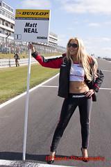 BTCC Brands Hatch 2012-88 (JD Sports Photography, John Davies) Tags: models btcc gridgirls promogirls brollydollies