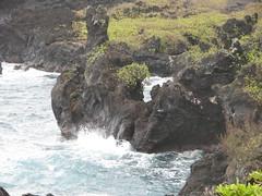Waianaoanapa State Park (rbglasson) Tags: park hawaii nikon maui wailuku d40 nikond40