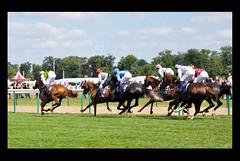 On the Ride, so to speak... (Guillaume Cattiaux) Tags: horse france sport nikon europe jockey longines chantilly courses d90 cheveaux cheveau coursehippique prixdianedelongines
