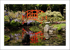 The red bridge ( Explore!) (Marjo1963) Tags: bridge red reflection garden japanese spring denhaag brug lente rood japansetuin landgoedclingendael 052014