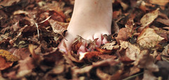 258/366: barefoot (Andrea  Alonso) Tags: me selfportrait autorretrato 366 365 feet foot leaves autumn brown