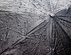 TOPW WWPW - Folds & Creases in Spacetime (Jay:Dee) Tags: topwwwpw2016 topw toronto photo walks 2016 worldwide photowalk water wet rain umbrella texture bw black white