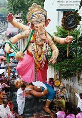 Lower parel cha ladka! (yashptl588) Tags: ganpati ganeshutsav mumbaiganeshfestival mumbaiganpati lowerparelchaladka