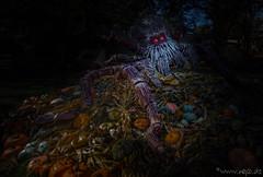 Thekla (Norbert Helbig) Tags: nikon d5200 reise europa deutschland europapark rust spinne halloween