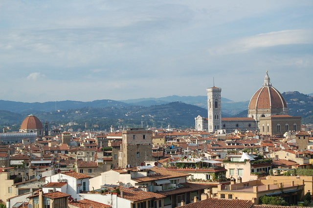 Florence from the Pitti