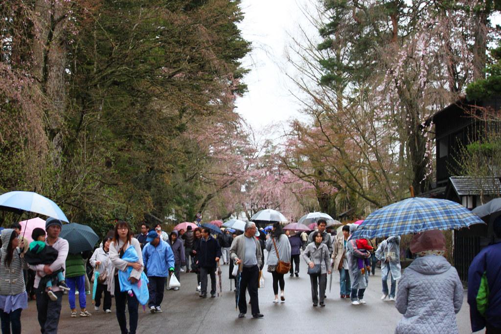 Tohoku Trip 1st day in Akita prefecture, Kakunodate (3)