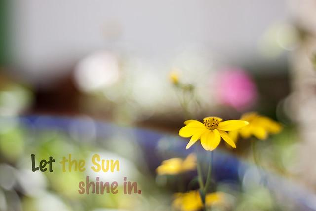 Deja que el sol brille