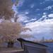 Pendang Lake