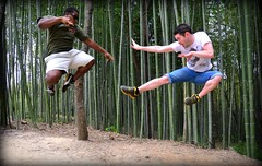 Ninja! (keithmaguire ) Tags: trees tree verde green forest asian fight jump asia asien groen do action martial kick ninja south arts korea vert tourist bamboo taekwondo karate korean asie punch grn combat southkorea  aasia asya zielony  attraction hijau damyang azia gwangju azi yeil sia berde sdkorea  selatan    chu xanh jeollanamdo      jeollanam zsia     gneykore   doublyniceshot tripleniceshot mygearandme mygearandmepremium mygearandmebronze mygearandmesilver 4timesasnice