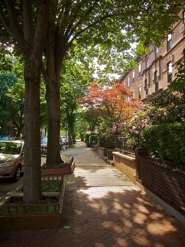Philadelphia Sidewalk
