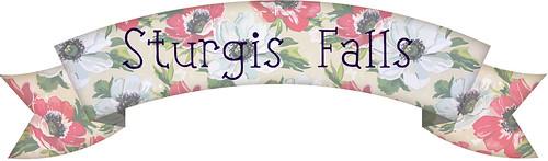 sturgis banner