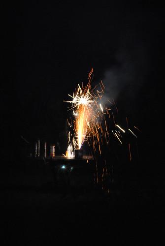 first week in July 2011 224