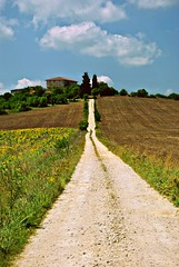 the long way of memories (Claudia Gaiotto) Tags: road sky clouds strada hill tuscany sunflower siena monteriggioni girasoli casale