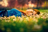 Fairy tale (Fabio Sabatini) Tags: red blur green leaves daisies spring haze bokeh mena ボケ bokeaji ボケ味 暈け