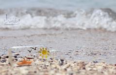 (ميـسـآء بنت عبـدالـلـﮧ ツ) Tags: canon flickr cam maisa عبدالله بنت رحله صوره 600d بحر فلكر فليكر كام كاميرا كانون سفينه ميساء علبه المصوره