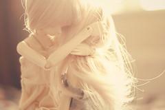 she's not you (dorkandy) Tags: summer fir bjd rosettedoll