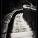 Stairway - Orrido, Bellano