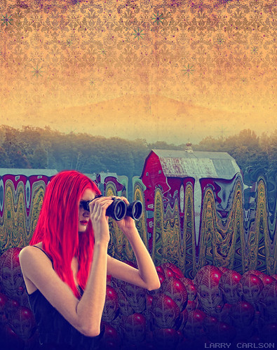 Larry Carlson, The Bird Watcher, digital chromogenic print, 2012.