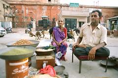 000096160003 (sophzhou) Tags: india jaipurindia jaipur incredibleindia indiastreetphotography indiaportraits goa goaindia streetphotography natgeo nationalgeographic indialandscape indiaculture