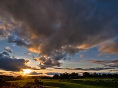 Curragh Sunset and Sheep2 (kckelleher11) Tags: ireland sunset clouds lens sheep e3 newbridge zuiko kildare curragh 2011 1122mm olympys