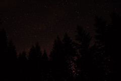 Nikon D3100 Astrophotography (C. Campbell) Tags: city chris trees light sky tree night clouds oregon forest plane stars photography star big nikon little satellite c nowhere astro junction eugene galaxy astrophotography pollution midnight astronomy galaxies zodiac middle campbell dipper Astrometrydotnet:status=solved ccampbell Astrometrydotnet:version=14400 d3100 Astrometrydotnet:id=alpha20110651828923