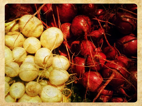 Radishes by JulieAndSteve