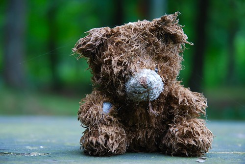An old lonesome teddy bear, wet and forgotten