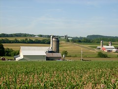 Farms in Buffalo Township (Gerry Dincher) Tags: corn pennsylvania dairyfarm unioncounty buffalotownship pennsylvaniaroute45