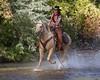 IMG_6467 (blackhawk32) Tags: horses horse cowboys cowboy shell wranglers wyoming cowgirl cowgirls rivercrossing wy wrangler horserunninginwater hideoutlodge