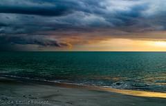Siesta Key, Sarasota, Florida (lezlievachon) Tags: