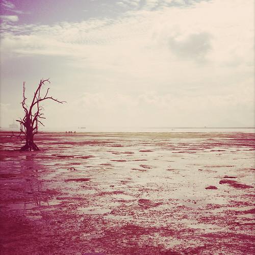 Ron Lin- Solitude