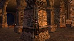 branick_moria_03 (Branick of Arkenstone) Tags: mailbox dance jig minesofmoria branick hauberkoftheeorlingas cloakoftheeorlingas