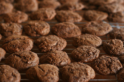 chocolate cake cookies 2