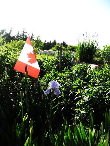 Canada Celebration