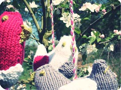 oiseau girl 4